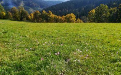Podzimní atmosféra na Valašsku!